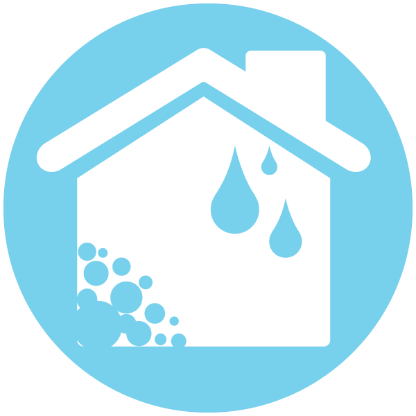 Mold & Water Remediation Services